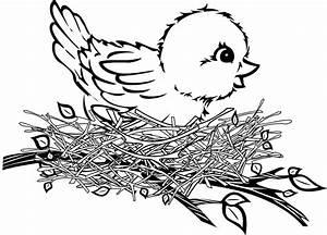 Bird Nest Clipart Black And White - ClipartXtras