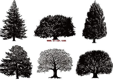 pohon hitam  putih vektor tanaman vektor gratis  gratis
