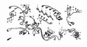 21 Best 2003 Cbr600rr Wiring Diagram