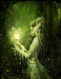 """La storia delle fate """"La radura nel bosco incantato"""