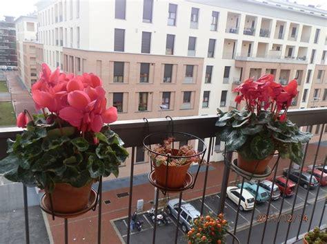 terrazzo in fiore fioriere terrazzo vasi e fioriere fioriere per il terrazzo