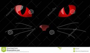Red Cat Eyes In The Dark | www.pixshark.com - Images ...