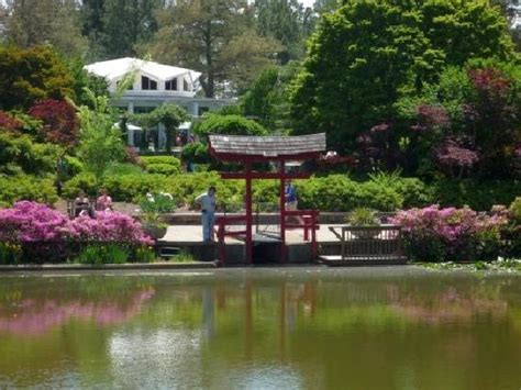 norfolk botanical gardens norfolk botanical garden 2018 all you need to