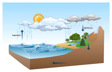 Diagram Of A Water by Water Cycle Drawing A Nature In Nature