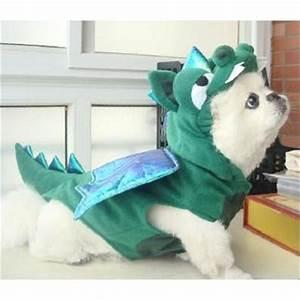 16 Best Pet Halloween Costume Winners For 2014: Funniest ...