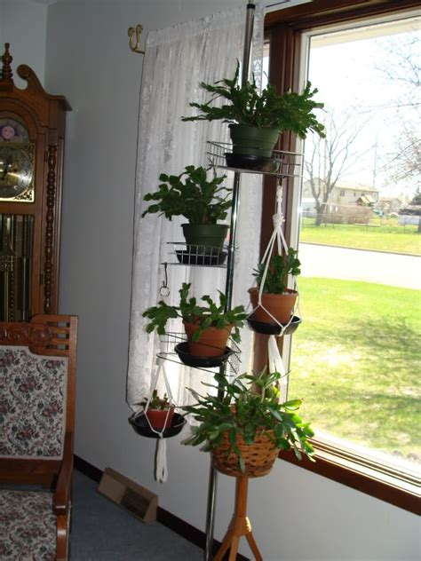 floor to ceiling tension pole plant hangers creatively displaying plants how do you do it