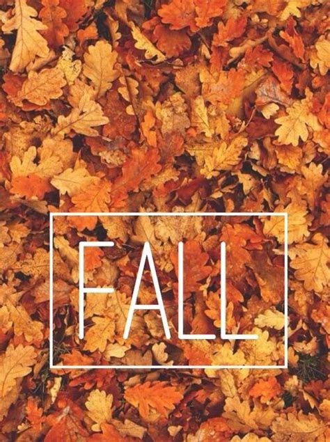 Artsy Fall Computer Backgrounds by Image Via We It Autumn Background Beautiful Fall