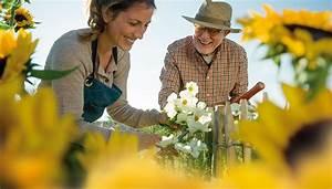 Meerrettich Blüht Was Tun : nektarweiden f r balkon und terrasse gutes f r bienen ~ Lizthompson.info Haus und Dekorationen