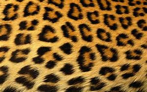 NEVER MESS WITH A MAN WEARIN LEOPARD SKIN...