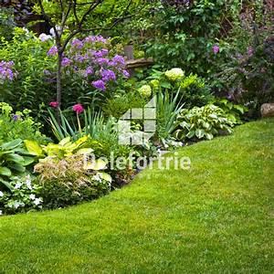 Plantes Vivaces Pour Massif : fleur massif la pilounette ~ Premium-room.com Idées de Décoration