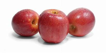 Apples Fruit Fuji Company Lady Pink Smith