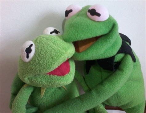 Kermit And His Friend Kermit