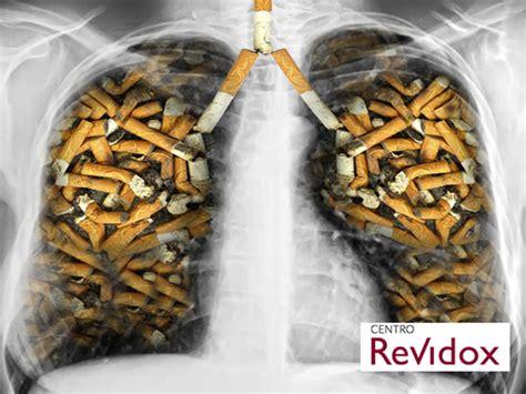 cabinet ideas for kitchen imagenes de el tabaco el tabaco el tabaco y otras