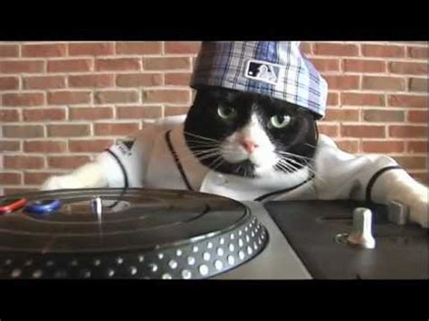 "DJ Kitty performs deadmau5's ""Subliminal""   YouTube"