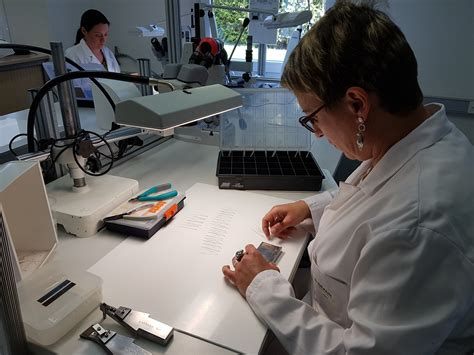 pose de chambre implantable nouveau pose de chambre implantable ravizh com