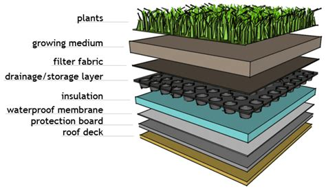 Powerhouse Growers  8 Layers Of A Sustainable Green Roof