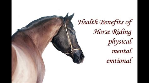 horse riding benefits health mental physical emotional care