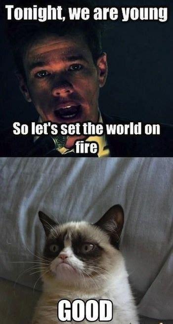 Grumpy Cat Memes Funny - funny quotes grumpy cat quotesgram