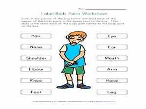 Naming Body Parts Worksheets