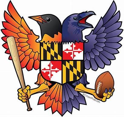 Baltimore Raven Ravens Transparent Orioles Clipart Oriole