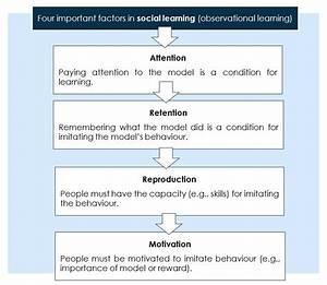 Ib Psychology Blog