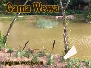 Game Kovila Authentic Sri Lankan VillageApe Gama