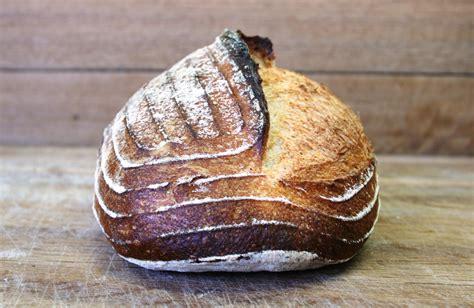 sourdough bread recipe  brasserie bread