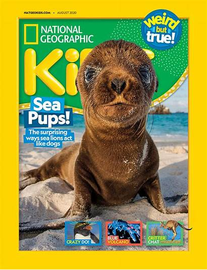 Geographic National Magazine Subscription August Usa Magazines