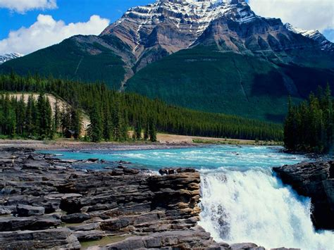 Delicately Beautiful Photo Nature Wallpapers For Your ...