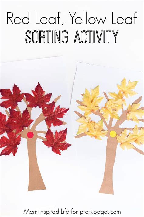 red leaf yellow leaf sorting activity fall preschool
