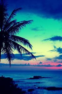 tropical sunset | iPhone wallpapers | Pinterest ...