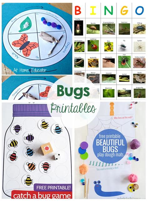 bugs activities  printables  crafting chicks
