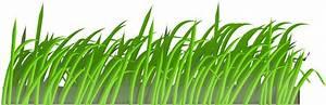 Grass Vector Png - ClipArt Best