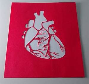 Gallery For > Anatomical Heart Stencil