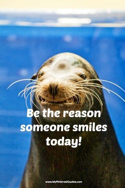 Animal Happy Monday Smile Image