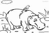 Coloring Hippo Printable Template Hippopotame Coloriage Boos Beanie Cool2bkids Imprimer Templates sketch template