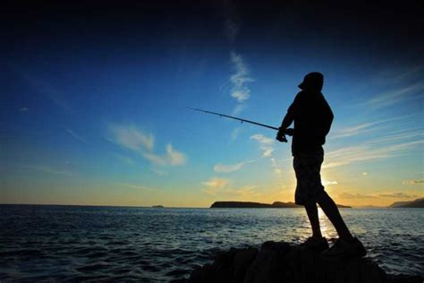 Bibit Ikan Nila Paling Bagus umpan yang bagus untuk mancing ikan toko umpan