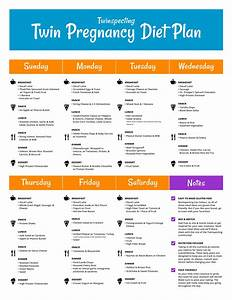 Looking For A Twin Pregnancy Diet Plan  Check Out What You