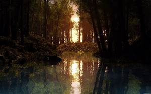 HD Nature Wallpapers by CurtiXs on DeviantArt