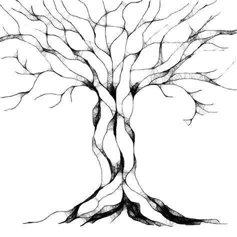 immagini  alberi belli della natura da colorare  disegnare