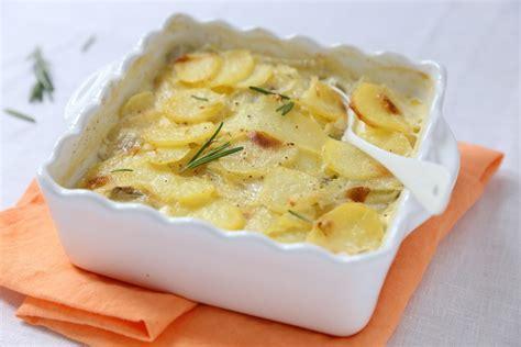 fenouil cuisine gratin dauphinois pommes de terre et fenouil