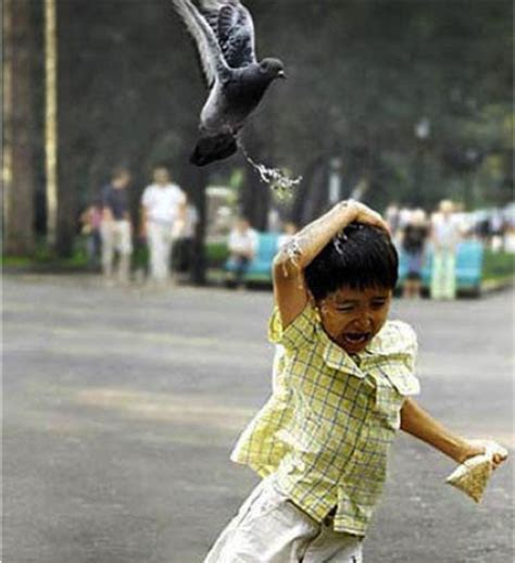 The Most Perfectly Timed Pictures In Internet History