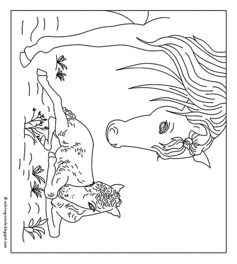 Paarden Kleurplaten Spirit by Paarden Kleurplaat Coloring Pages Coloring Pages