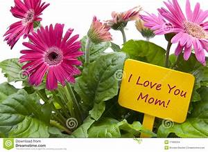 Happy Mothers Day With Flowers Stock Photo - Image: 17995534