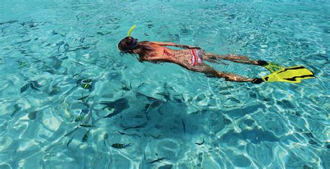 snorkeling pohnpei eco adventure guide