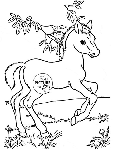 Pin Free Horse Coloring Pages For Girls On Pinterest