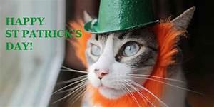 Happy St. Patrick's Day! | inotternews.com