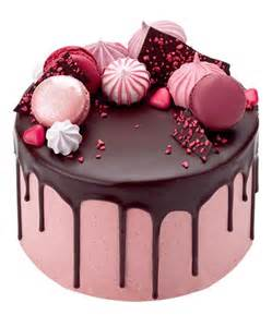 hochzeitstorte glutenfrei raspberry and chocolate drop cake with meringues macaroons and chocolate shards beautiful http