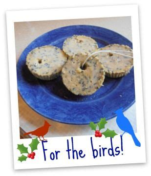 nut free bird seed cookies for the birds focus on