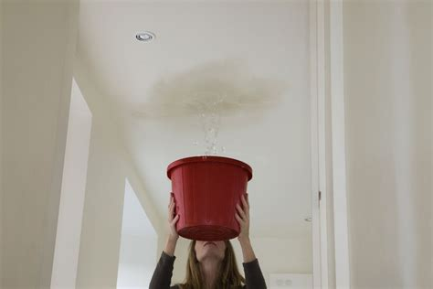 water leaking out of ceiling fan how to fix your leaking ceiling